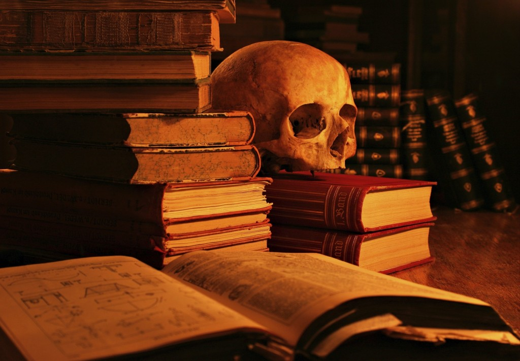 Death of Literature - Skull and Book